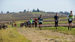 Trail calendar France Pays de la Loire Loire-Atlantique Trailrunning race in February 2021 > Trail du Vignoble Nantais  (Vertou)
