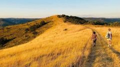 Trail kalender Frankrijk   Trailrun in April 2021 > Trail de Juliau (Saint-Jean-Le-Centenier)