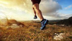 Calendrier trail Belgique   Trail en Mai 2021 > Trail des Carriers (Sprimont)