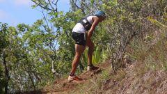 Calendrier trail France   Trail en Décembre 2020 > Trans-Dimitile (entre-Deux)