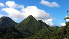 Calendrier trail France   Trail en Août 2021 > Trail des 3 Pitons (La Plaine des Palmistes)