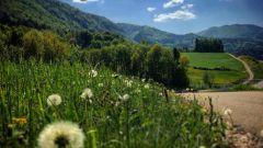 Calendrier trail Suisse   Trail en Août 2021 > Moutier Trail Marathon (Moutier)