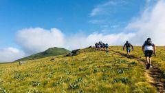 Calendrier trail France   Trail en Juillet 2021 > L'Envol de la Perdrix (Besse-et-Saint-Anastaise)