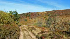 Calendrier trail France   Trail en Octobre 2021 > Grands Trail d'Auvergne (Aubusson d'Auvergne)