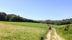 Trail kalender Frankrijk Île-de-France Val-d'Oise Trailrun in Mei 2021 > Trail des Aubins (Bruyères-sur-Oise)