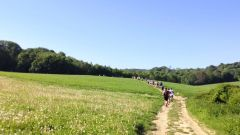 Calendrier trail France   Trail en Mai 2021 > Trail des Aubins (Bruyères-sur-Oise)