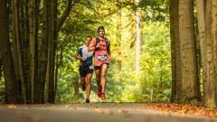 Calendrier trail Belgique   Trail en Octobre 2021 > Trail de Bruxelles (Auderghem)
