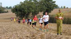 Calendrier trail France Occitanie Haute-Garonne Trail en Octobre 2020 > Trail du cassoulet (Verfeil)