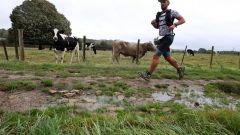 Trail kalender Frankrijk Hauts-de-France  Trailrun in September 2020 > Trail de la Cervoise (Houdain)