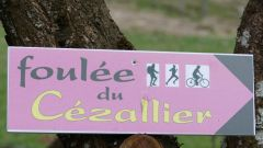 Calendrier trail France Auvergne-Rhône-Alpes Cantal Trail en Août 2021 > Les Foulées du Cézallier (Marcenat)