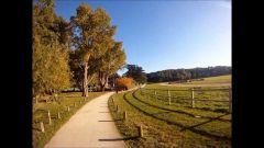 Calendrier trail France   Trail en Novembre 2020 > Ecorun (Vaucresson)