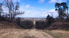 Calendrier trail France   Trail en Mars 2021 > Ultra Trail du Pays de Fontainebleau (Fontainebleau)