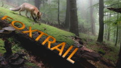 Trail kalender Frankrijk Grand Est  Trailrun in April 2020 > Foxtrail (Bouzonville)