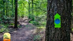 Trail calendar the Netherlands   Trailrunning race in May 2020 > Veluwe Groot Boeschoten Trail (Voorthuizen)