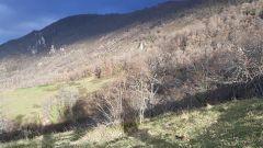Calendrier trail France Occitanie Ariège Trail en Novembre 2021 > La Gaillardhaise Nocturne (Montgailhard)