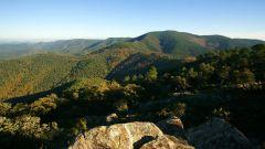 Trail calendar France Provence-Alpes-Côte d'Azur Var Trailrunning race in September 2021 > Gonfa'Trail (Gonfaron)