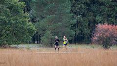 Trail calendar the Netherlands   Trailrunning race in April 2020 > RunForestRun Hart van Drenthe (Elp)