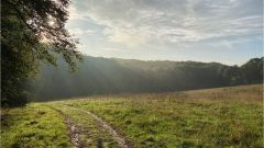 Calendrier trail Belgique   Trail en Octobre 2021 > Into the Woods (Beauvechain)