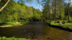 Calendrier trail Belgique   Trail en Mars 2021 > Trail de la Lomme (Bure)