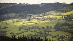 Calendrier trail Belgique   Trail en Mars 2021 > Trail Series Manhay (Manhay)
