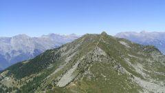 Calendrier trail Suisse   Trail en Août 2021 > Nendaz Trail (Haute-Nendaz)