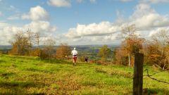 Trail calendar France Auvergne-Rhône-Alpes Cantal Trailrunning race in October 2021 > Tour du Nipalou (Lorcières)