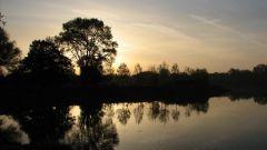 Trail kalender Frankrijk   Trailrun in December 2020 > Trail Nocturne des Lacs (Villeneuve d'Ascq)