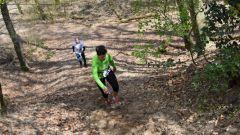 Trail kalender Nederland   Trailrun in April 2021 > Seters Mooiste (Dorst)