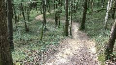 Trail calendar France Nouvelle-Aquitaine Lot-et-Garonne Trailrunning race in November 2020 > Trail des Petits Bois (Puysserampion)