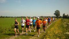 Trail calendar Belgium   Trailrunning race in August 2019 > Pierenloop Trail (Ravels)