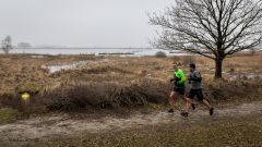Trail calendar the Netherlands   Trailrunning race in December 2021 > RunForestRun Dwingelderveld (Dwingelderveld)