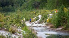 Trail kalender Nederland   Trailrun in Mei 2021 > RunForestRun Gasselterveld (Gasselte)