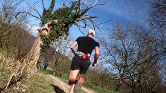 Trail calendar France   Trailrunning race in March 2021 > Sacré Trail des Collines (Tullins)