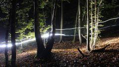 Calendrier trail Belgique   Trail en Mars 2021 > Trail de la Saint Patrick (Hony)