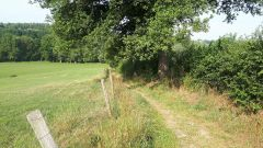 Calendrier trail Belgique   Trail en Août 2020 > Trail de Saint-Jean-sart  (Aubel)