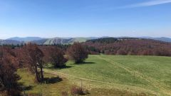 Trail calendar France Grand Est Haut-Rhin Trailrunning race in July 2021 > Trail du Schnepf (Sondernach)