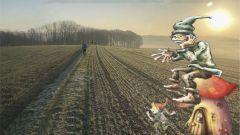 Calendrier trail Belgique   Trail en Mars 2022 > Trail des Serres (Frasnes-Lez-Anvaing)