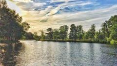 Calendrier trail Pays-Bas   Trail en Octobre 2020 > Seters Mooiste (Dorst)