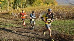 Trail calendar France Grand Est Marne Trailrunning race in November 2020 > Sparnatrail (Épernay)