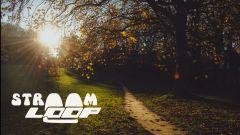 Calendrier trail Belgique   Trail en Avril 2021 > Stroomloop (Vilvoorde)