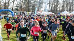 Trail calendar France Grand Est  Trailrunning race in March 2020 > Trail des Terroirs Vosgiens (Epinal)