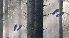 Trail calendar France Grand Est Ardennes Trailrunning race in May 2021 > Trail des Torés (Gespunsart)