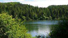 Calendrier trail France Occitanie  Trail en Juillet 2020 > Trail du Touch (Saint André)