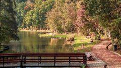 Calendrier trail Belgique   Trail en Octobre 2021 > Trail du BW (Gastuche)