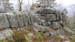 Calendrier trail France Bourgogne-Franche-Comté Yonne Trail en Décembre 2020 > Trail O Duc (Quarre Les Tombes)