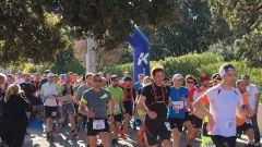 Trail calendar France Corse  Trailrunning race in March 2021 > Trail Palazzi Sant'Anghjulu (Santa Reparata di Balagna)