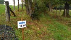 Calendrier trail France Nouvelle-Aquitaine Corrèze Trail en Octobre 2020 > Trail du Transcailladou (Saint-Jal)