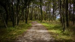 Trail kalender Frankrijk Nouvelle-Aquitaine  Trailrun in Augustus 2020 > Hardoiako Itzulia (Ustaritz)