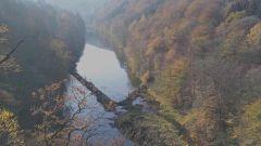 Calendrier trail Belgique   Trail en Mai 2019 > Trail de la Vanne des Moines (Sainte-Cécile)