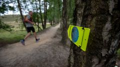 Calendrier trail Pays-Bas   Trail en Juin 2021 > Veluwezoom Trail Experience (Dieren)